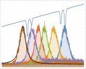 Optical Quantum Information