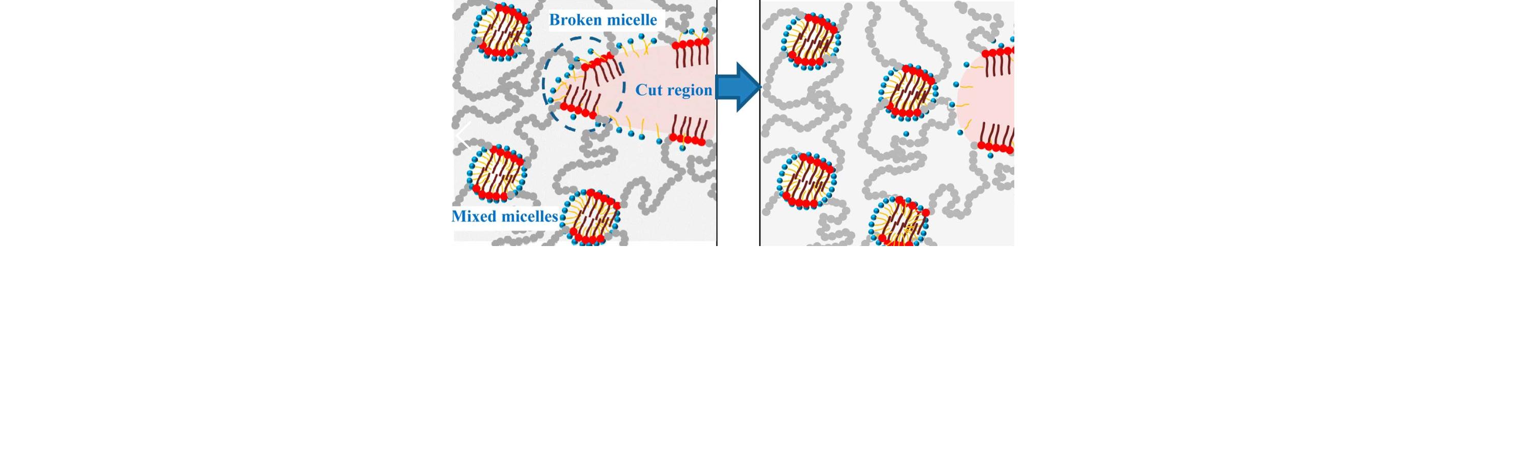 Macromolecules_nanostructure_self_heal_micellar_hydrogels.png